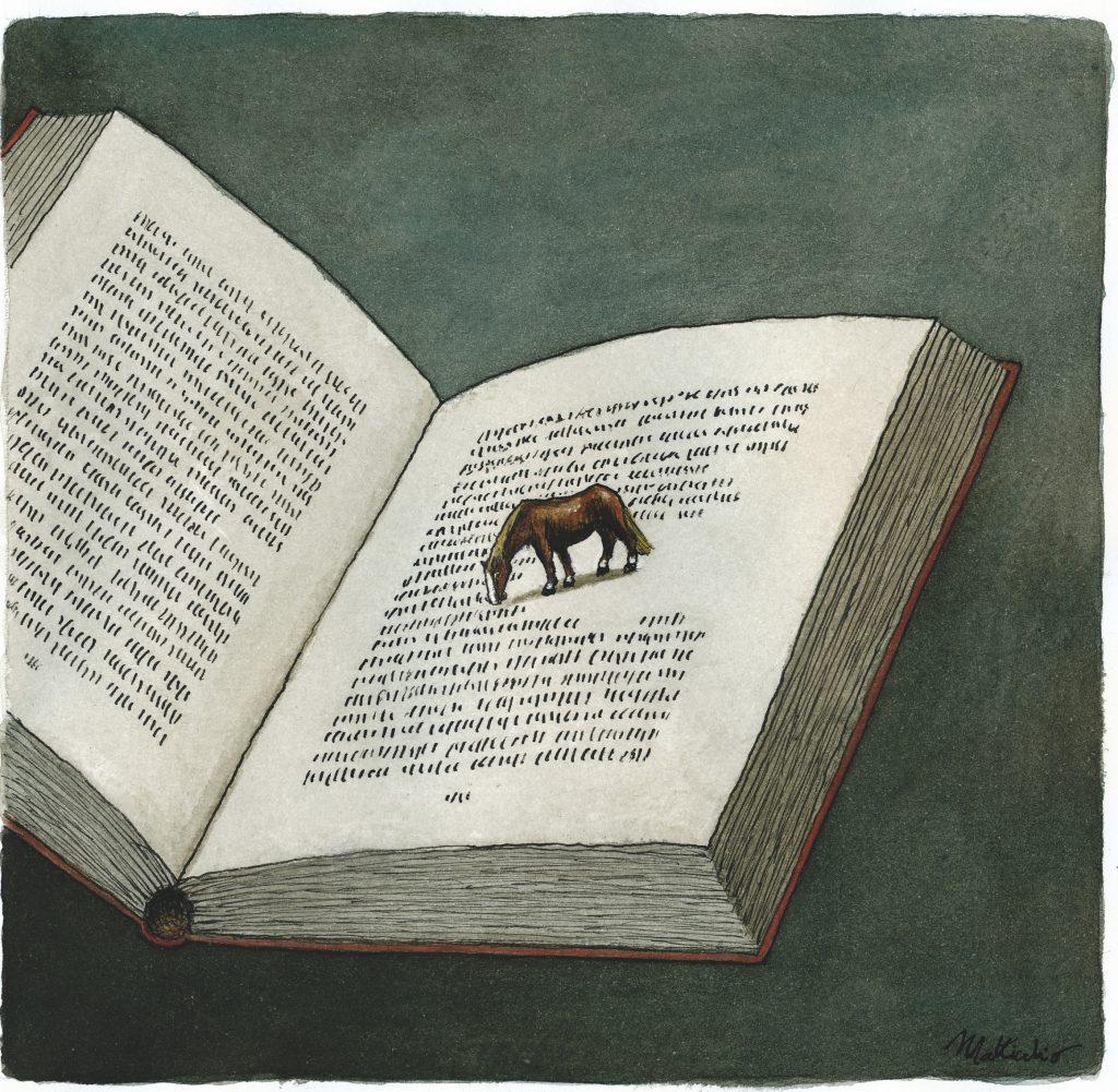 'Cavallo Ignorante'; Illustrazione di Franco Matticchio